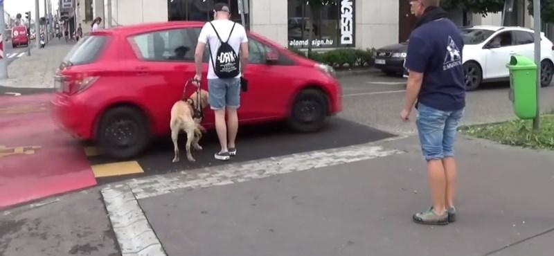 Kis híján elgázolták a vakvezető kutyát és gazdáját Budapesten - videó