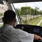 Füvesítették az 1-es villamos új szakaszát