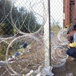 Törvénytelenül építettek dupla kerítést a szerb-magyar határra