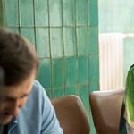 Terhes exsztriptíztáncosnőt alakít Tenki Réka az új magyar romkomban – előzetes