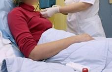 Népszava: A járvány miatt sok daganatos beteg nem jutott diagnózishoz