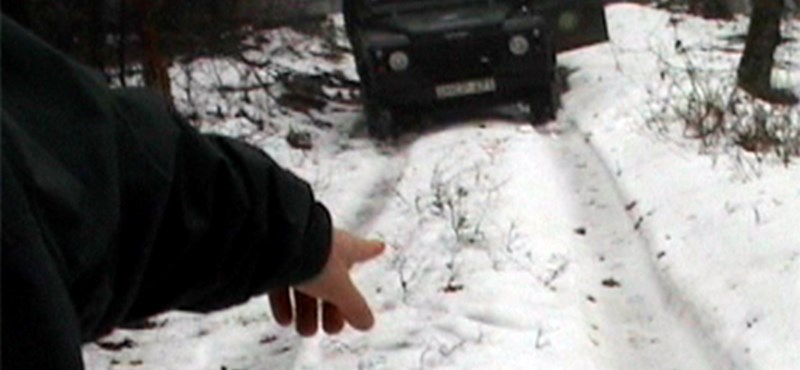 Kamerával a magyar farkasok nyomában - videó