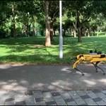 Szingapúrban robotkutya figyelmezteti a szabadban járókat, hogy tartsanak nagyobb távolságot – videó