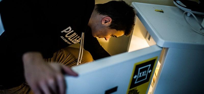 Támogatást kérne hűtővásárláshoz? Így teheti meg