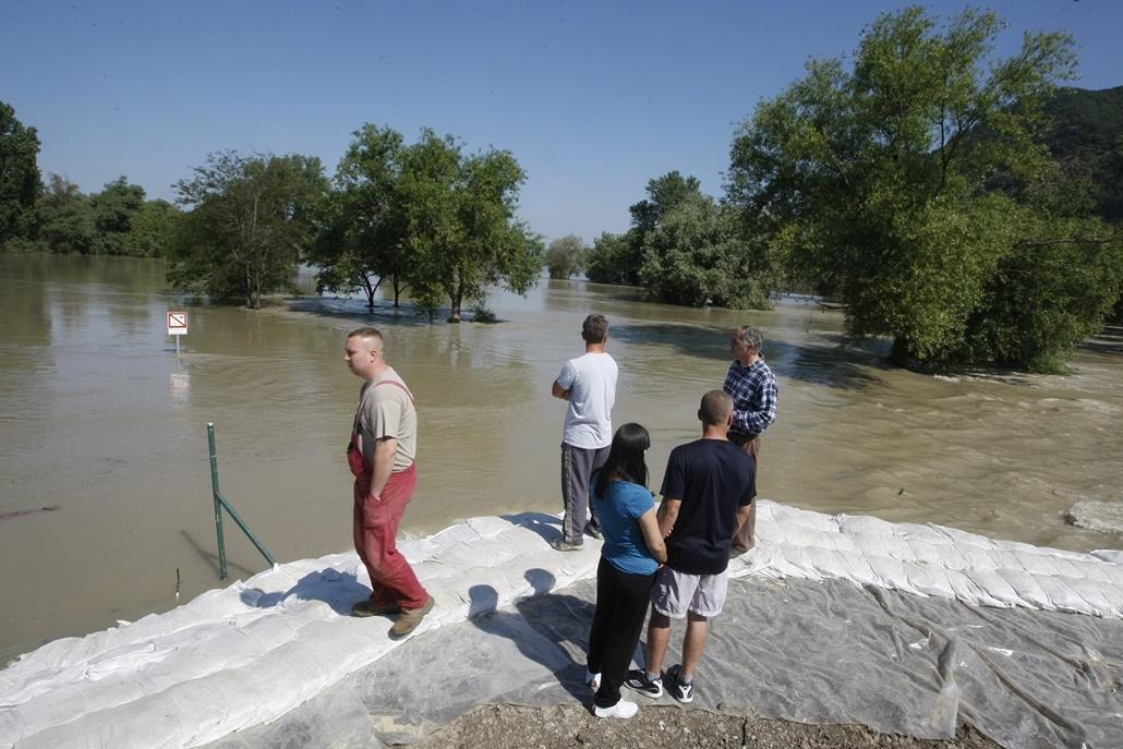 Árvíz 2013, Duna árvíz, Dömös, június 8.