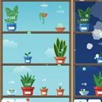 Kedveli a növényeket? Mutatunk egy remek játékot, de vigyázzon, függővé teheti