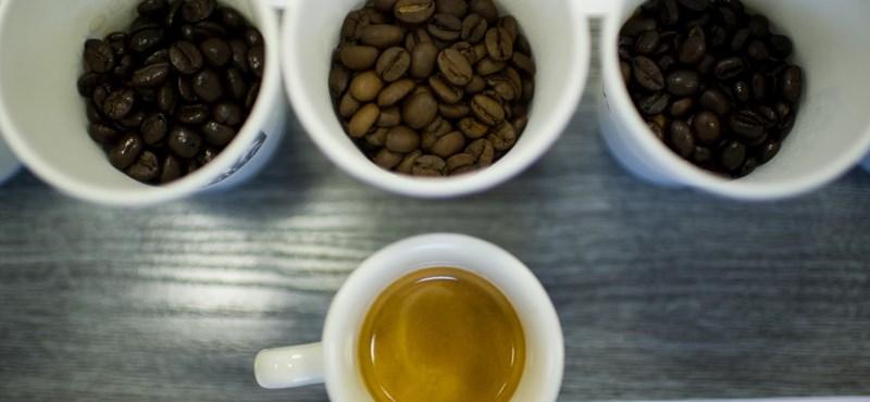 Guruló kávézó nyílt Szegeden