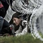 Az ENSZ felszólította Magyarországot, hogy növelje a menedékkérők esélyeit, hogy beléphessenek az országba