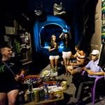 Exit: Könnyűzenei ostrom a péterváradi erőd ellen - Nagyítás-fotógaléria