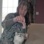Dorombolási hangrekorder lehet egy brit macska