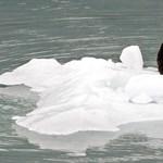 A műholdak árulkodnak: gyorsan növekednek a gleccsertavak