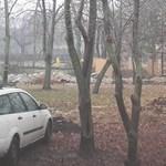 Riadót fújtak a ligetvédők: vágják a fákat a Városligetben