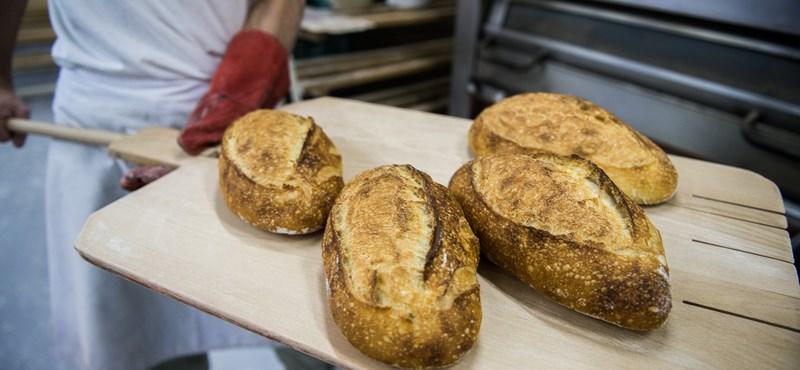 Politikusok és pékek párbaja: ki mondja meg, mennyi lesz a kenyér?