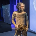 Kiderült, hogy merre vezetett Ötzi utolsó útja