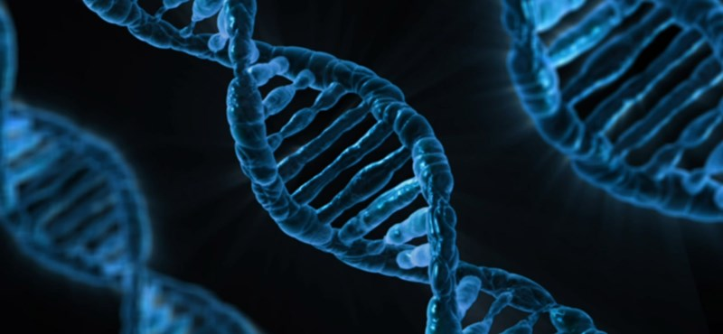 Akiben ilyen génmutáció van, annak emlékei nagyon erősek és alig felülírhatók