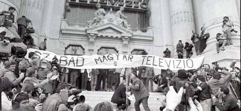 Szabad magyar televízió