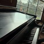 Sztárparádéval csábít Ryan Gosling újabb zenés-szerelmes filmje – előzetes