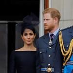 Harry és Vilmos herceg közös nyilatkozatot adott ki