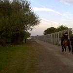 Már csak 25-30 kilométer hiányzik a kerítésből a szerb határon
