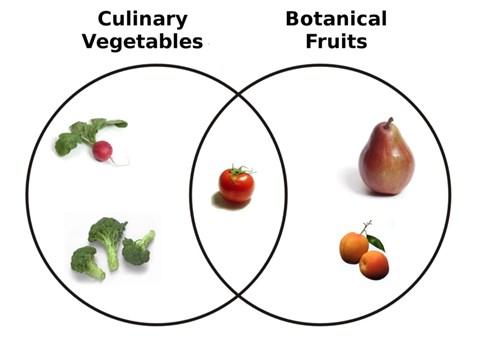 Prostatitis kezelés gyümölcs zöldségek Csipkebogyó hogyan kell inni a prosztatitis