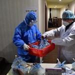 WHO: egyelőre nincs ismert gyógymód a koronavírus kezelésére