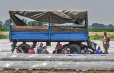 Jobban sújtja a bevándorlók munkahelyeit a koronavírus,  Magyarország viszont a kivételek között