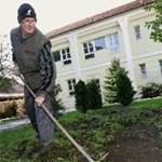 Jó hír: tovább él, aki kertészkedik