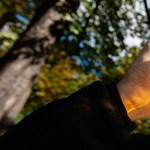 Adóemelés miatt emelkedhet az alkohol, a dohány és az üzemanyag ára