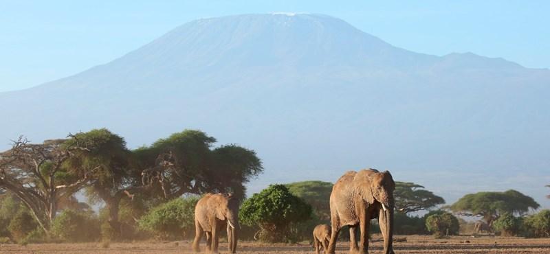 Megfékezték a Kilimandzsárón tomboló tűzvészt