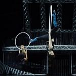Évente egyszer minden általános iskolást elvisznek színházba, cirkuszba, koncertre: itt az új program