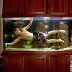 Rendhagyó akváriumok