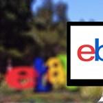 Preparált sertésembriót, gyászkoszorút, fenyegető üzeneteket kaptak, mert kritizálták az eBayt