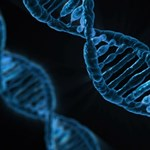 Milyen lesz a mai biológiaérettségi?