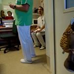 Appot adnának az orvosok kezébe, hogy ne a betegeken gyakoroljanak