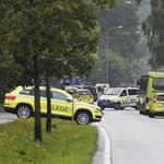 Saját unokahúgát ölte meg az oslói szélsőjobbos merénylő