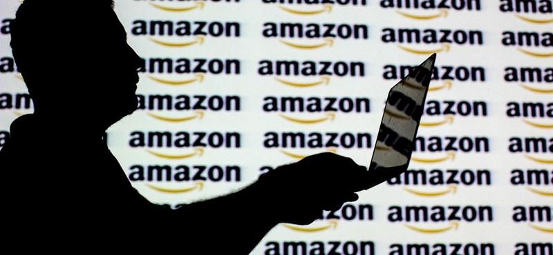 Kikerült a nyilvános netre az űrlap, amin a hatóságok kikérhetik az Amazon-ügyfelek adatait