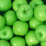 Nevet váltott az Apple Shop