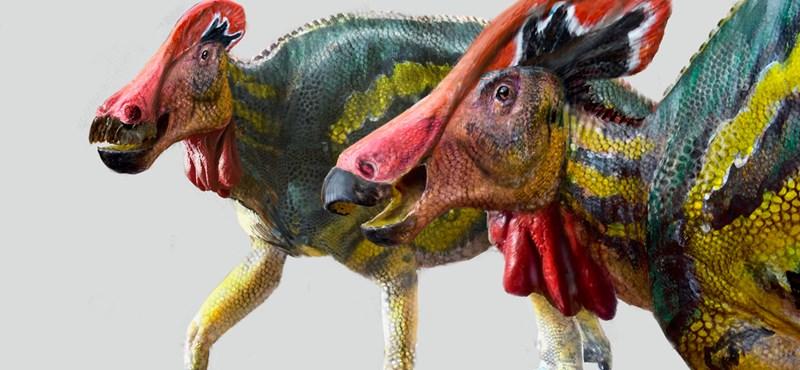 A tarajos dinók eddig ismeretlen faját azonosították Mexikóban
