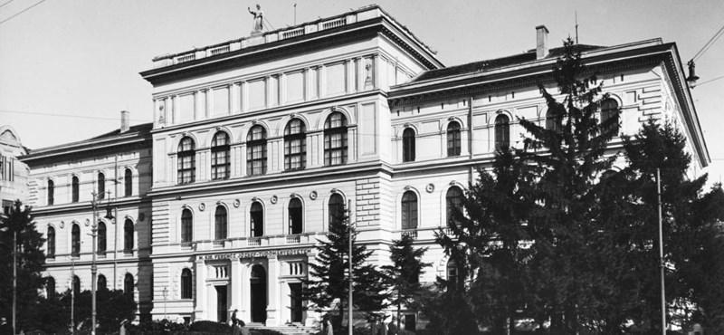 5906 diákot vettek fel a Szegedi Tudományegyetemre