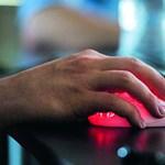 Így lehet olcsón és hatékonyan tanulni – online, otthonról