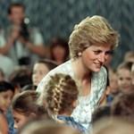 Harry herceg és Meghan Markle interjúja után a sikerlistára ugrott Diana életrajzi könyve