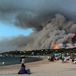 150 hektár erdő elpusztításával vádolnak két tinit