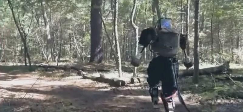 Itt tart most a Google emberszabású robotja – videó