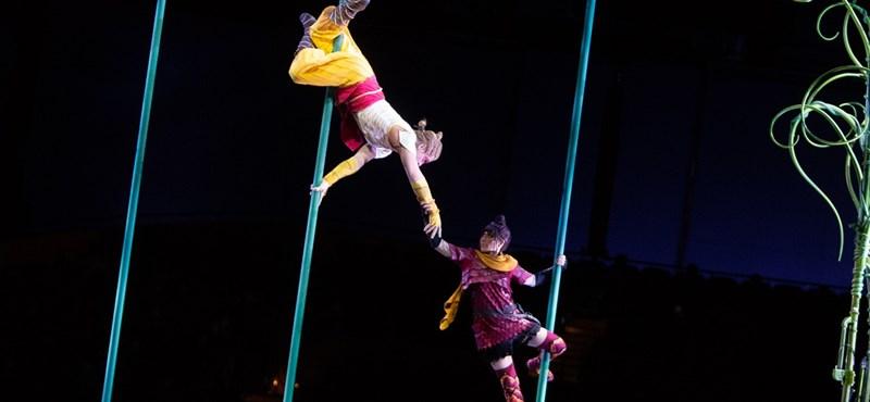 Csődvédelmet kér a Cirque du Soleil