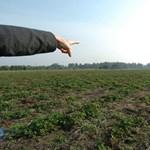 Bombát dobtak a gazdák közé Orbánék