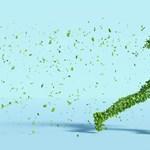 A műanyag szatyorról mond le vagy a repülésről? Töltse ki a zöld kérdőívet!