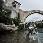 Bosznia: a méz, a vér és a 139 miniszter országa – Nagyítás-fotógaléria