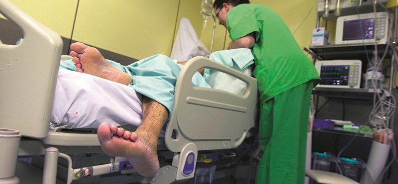 Stroke: biztató eredménnyel zárult egy amerikai őssejtkísérlet