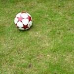 Nem utazik az orvos-fociválogatott a mexikói vb-re
