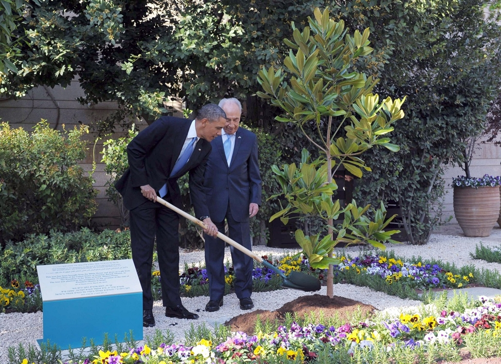 Barack Obama Izraelben, Simon Perez, fát ültetnek